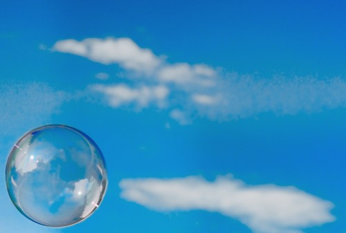 What bubble do 52% of Americans live in?